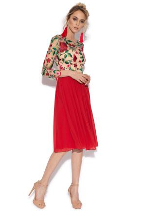 Emborided flared dress