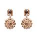 Golden elegant earrings